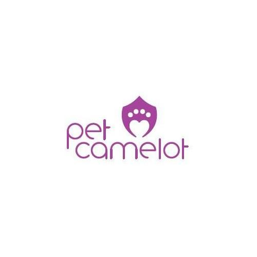 Pet Camelot cat