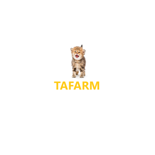 Tafarm cat
