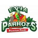Evia parrots καναρίνια