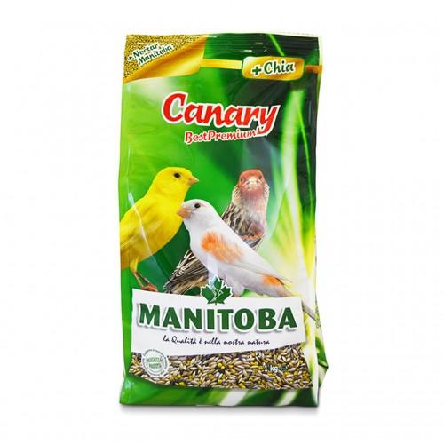 MANITOBA CANARY 1kg